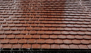 Common Roof Problems that Need a Quick Fix